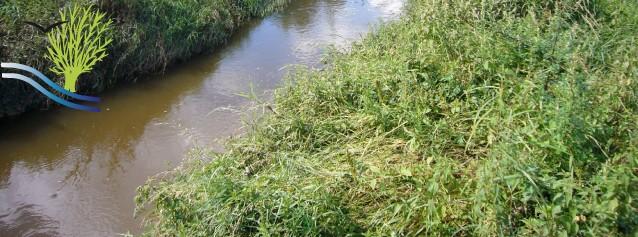 Restrictions de certains usages de l'eau en Saône-et-Loire